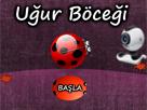 Webcam Ugur Böcegi Oyunu Oyna